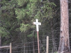 White cross on Montana highway